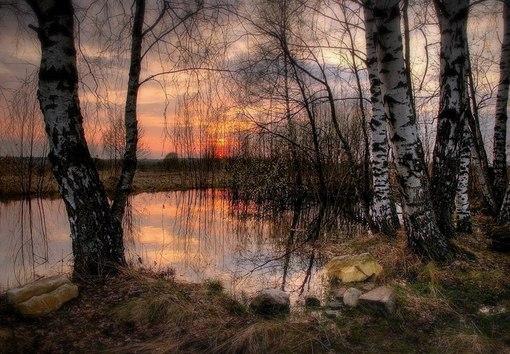 Условия проживания. Охота в Кировской области